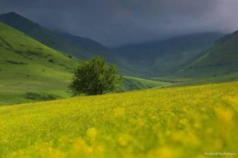 Արամազդ լեռան լանջին...