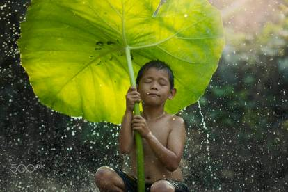 The freshness of the children rural in the rainy season.